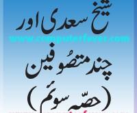sheikh-saady-and-few-Soofi.(part-3-title)